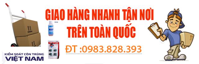 Hotline đặt thuốc diệt mối